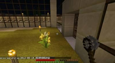 BUTTERFLY MANIA для Minecraft - Скриншот 1